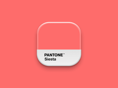 Pantone Icon colour iconography pantone icon