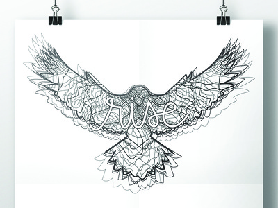 Rise line art line drawing script bird hawk rise