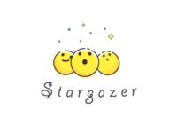Logo Exploration for Stargazer (Rejected)