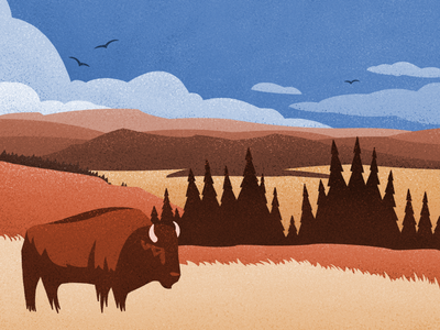 Home Where the Buffalo Roam - Illustration canadian artist nature outdoors retro vintage lettering graphic design digital art
