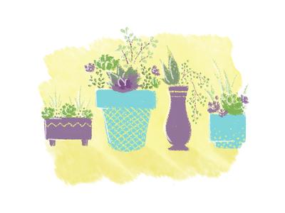 More Freakin' Plants