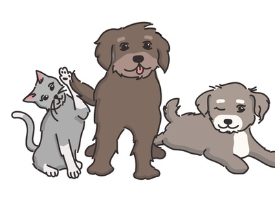 Illustration for a Pet Company cartoon cats design drawing branding vector dogs illustration pets