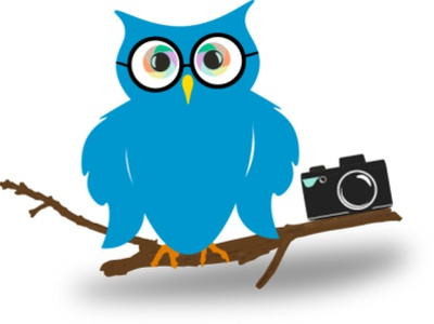 Hoot Owl Concept Logo minimal vector logo illustrator illustration icon branding logotype