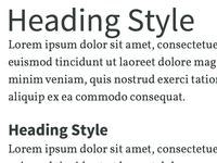 Type System Detail 1