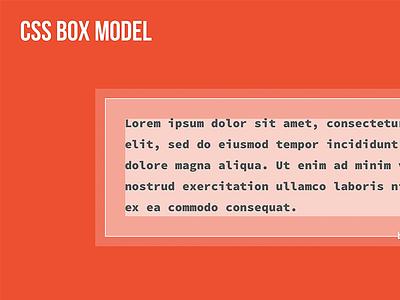 CSS Box Model css box model slide