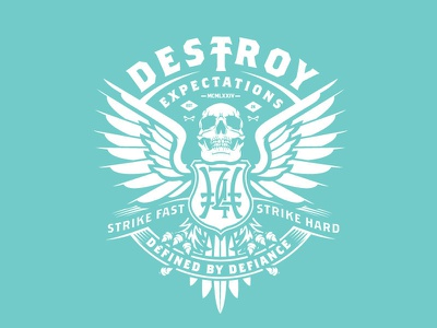 Destroy Expectations hoodie wings skull vector illustration vector