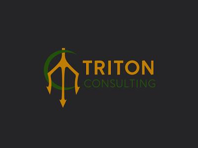 Consultancy Firm Logo consulting consultancy trident triton typography vector art illustration company design logo design logo flat branding