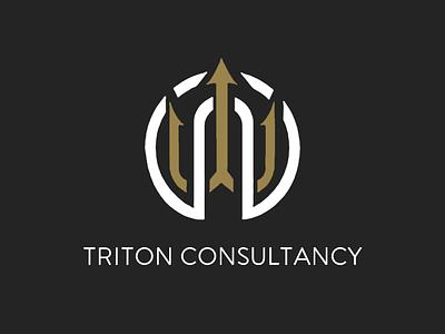 Consultancy Firm Logo consultancy consulting triton trident company design logo flat vector illustration logo design branding