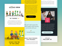 Lettuce Grow Email Marketing