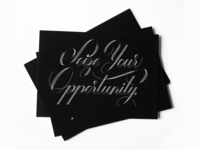 Seize Your Opportunity