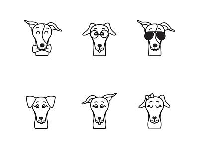Italian Greyhounds greyhound italian