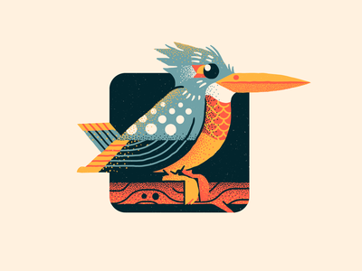Kingfisher vector texture colors illustration gegometric perch branch bird illustration bird kingfisher