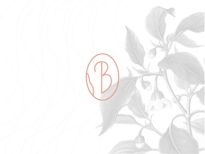 Bertina guadalajara mexico handcraft jam b b logo icon branding