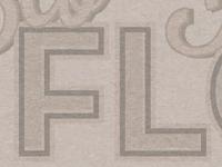 Type on Texture