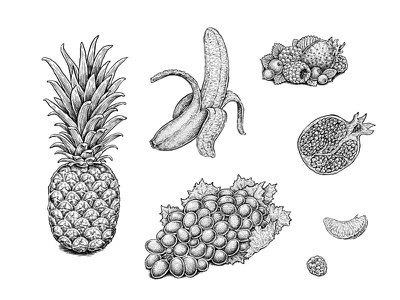 Fruits nature food illustration strawberry berries raspberry grapes orange pomegranate banana pineapple fruits