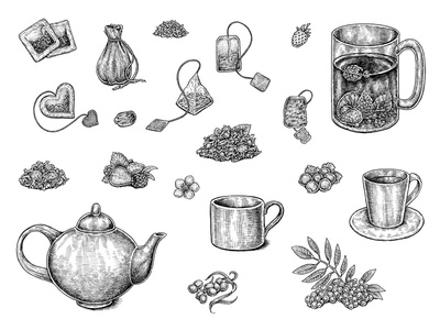 Tea Collection ink drawing illustration menu cafe drink cup fruits berries herbal tea