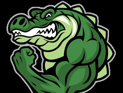 alligator vector the crocodile icon app animation typography illustration illustrator branding logo graphic design design