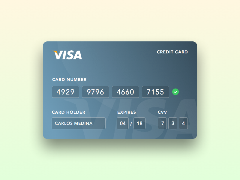Daily UI - Day 001: Add credit card payment visa card credit dailyui daily ui