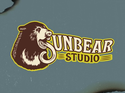 Sunbear Studio Branding vector logo procreate digital illustration graphic design branding illustration design