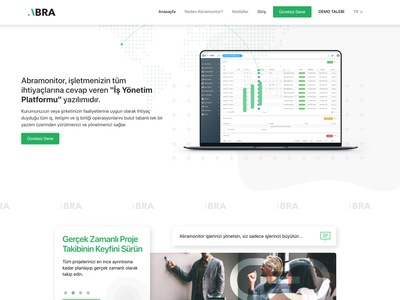 Abra Monitor - Professional Project management software