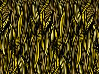 Hair Pattern