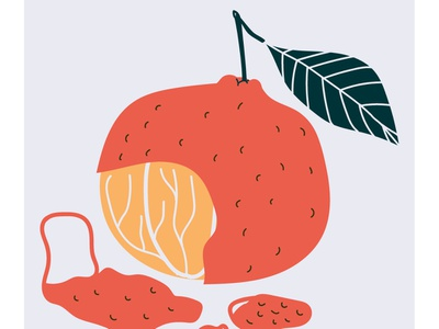 Moments of negligible happiness happiness moments winter clementine fruit food tangerine visual interview color vector illustration