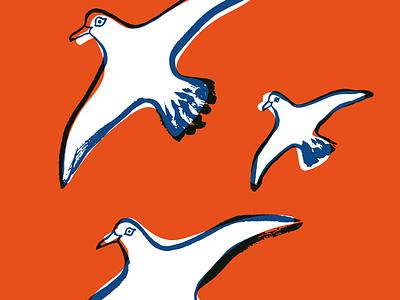 SUQ_03 - seagulls travelguide magazine editorial illustration illustration