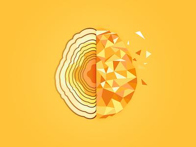 Geometric Brain Illustration | Inspiration vector design logo design graphics minimal branding illustration logodesign logo graphic geometric art geometrical geometric geometry