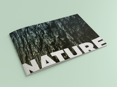 Nature Photography Zine zinegraph nature photography nature natural photographer photography zines zine