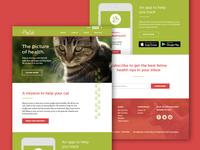Big Cat Website Concept