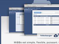 CMS Mibbo Presentation