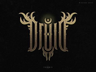 druid magic wow warcraft tshirt clothing fantasy druid wiktor ares music game logotype logo lettering high-style typography
