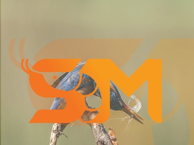SHRIMP MODERN LOGO typography ux ui illustration illustrator vector branding graphic design design logo modern shrimp