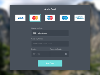 002 - Card Capture Form pay payment fields capture form card credit card ui dailyui