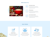 Binge Box Web Design Proposal