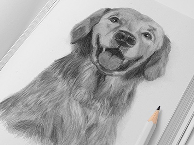 Illustration of dog art dog illustration. pencil drawing picture design sketch hand draw pugacheva