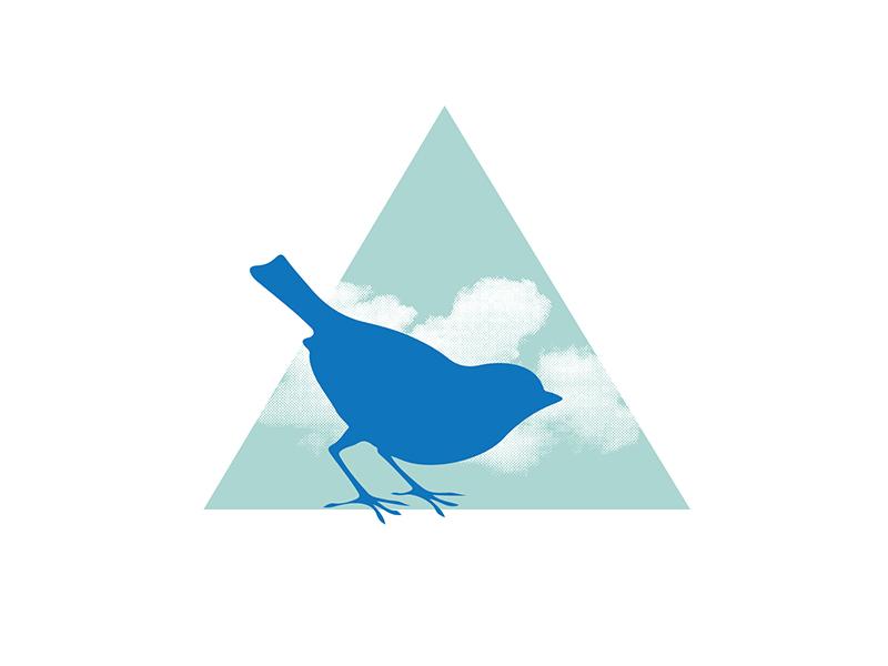 Bird Logo Concept cloud triangle bird logo
