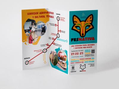 Fesnativa editorial design brochure design illustration visual identity design