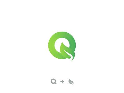 Q + Leaf Logo leaf logo branding eco green icon vector alphabet letter lettermark fresh plant natural organic whitespace negativespace q logo imonuix logo designer logo design logo