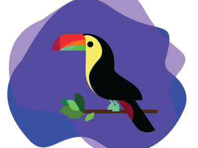 Toucan christmas illustrator toucan design vector illustration
