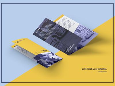 Trifold Brochure branding ui logo design
