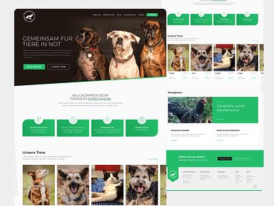 Redesign Animal Shelter website re-design cat shelter animals blog dog redesign society animal animal shelter website webdesign