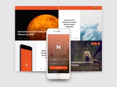 Web & Mobile View