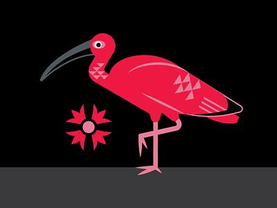 Scarlett Ibis adobe illustrator simple bird geometric beak packaging vector flamingo bird ibis illustration