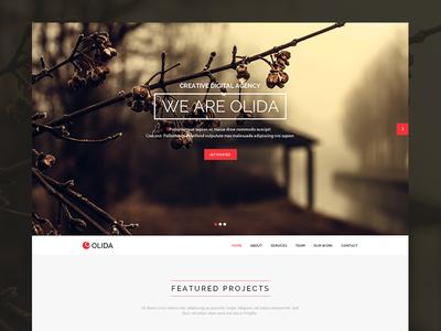 Olida | Multi-Purpose Parallax PSD Landing Page