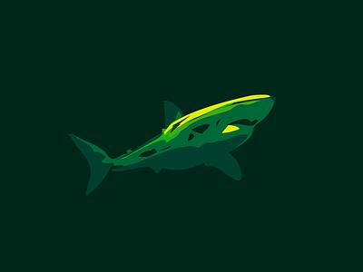 shark vector 2 02 vector