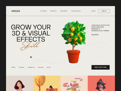 Viduza Website product web ux ui startup service website interface
