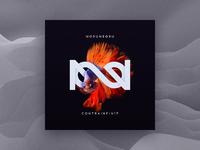 Contrainfin17