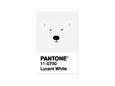 Pantone Polar Bear motion graphic motiongraphics motion design motion pantone2020 pantone polar bear polarbear wildlie design illustrations digitalart illustraion illustration art designer digital art illustration digital illustration illustrator