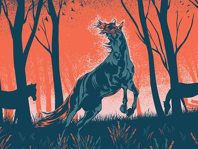 The Horse vector dusk horse illustrator illustration